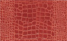 dekor-preview-cocco-red-39-3x24-3