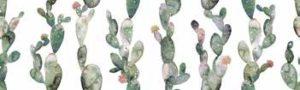 Glimpse Cactus Ornato 30х100